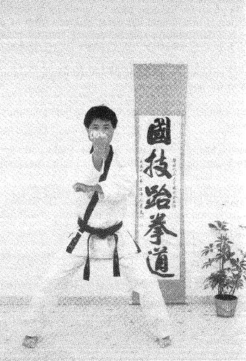 Cho_taekwondo_bok1.jpg
