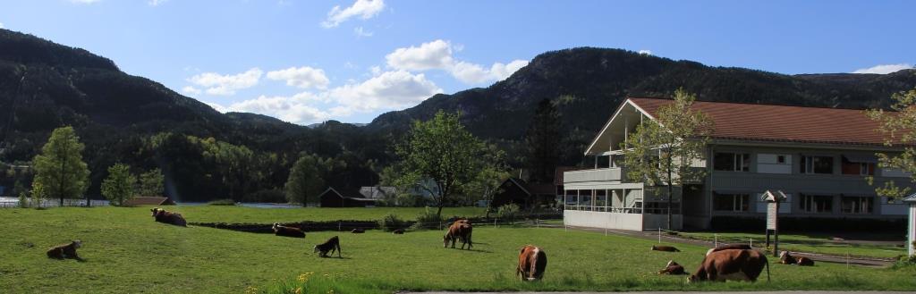 Sirdalsheimen_sommer3.jpg