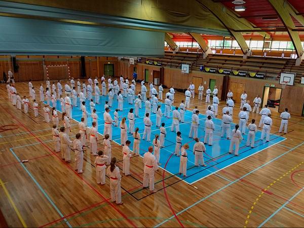 Karatetrening i Egersundshallen