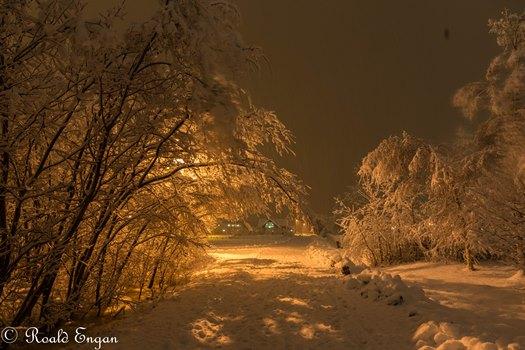 Snø, foto Roald Engan