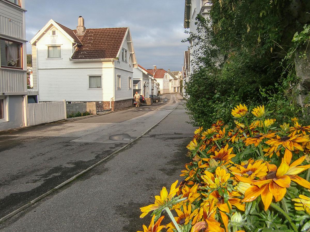 86206eb0 Opprusting av Nyeveien, forslag til gatebruksplan - Eigersund kommune