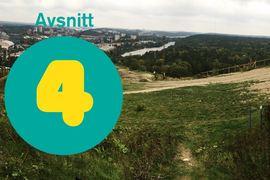 Fjärde avsnittet av podcasten Vasaloppet Lagom handlar om skidgångsträning. FOTO: Vasaloppet Lagom.