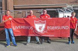liverbirds_400x262