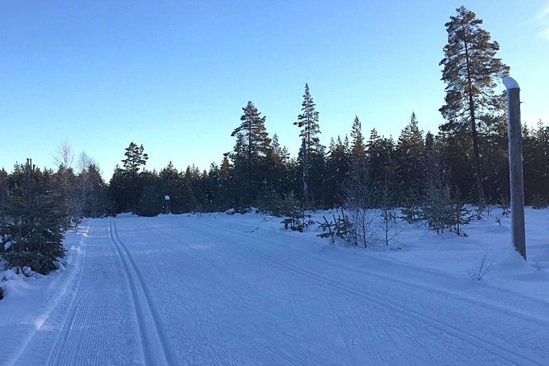 Det råder perfekta förhållanden längs Moraloppets sträckning mellan Oxberg och Mora skidstadion. FOTO: IFK Mora SK.