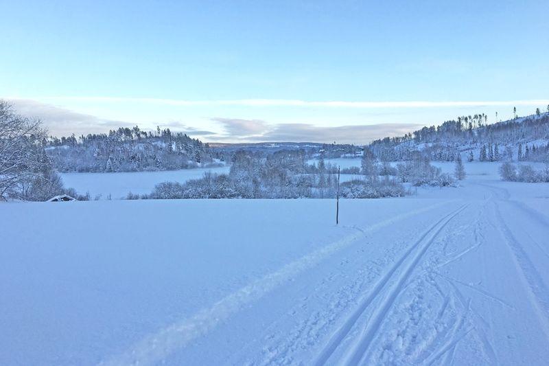 Toppförhållanden väntar för åkarna som ska åka ICA-loppet i Matfors på söndag. FOTO: ICA-loppet i Matfors.