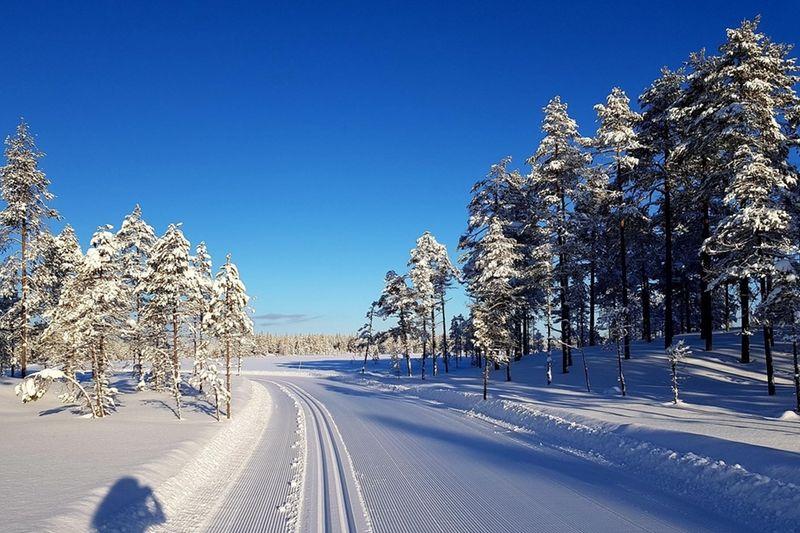 Skinnarloppet kan erbjuda suveräna förhållanden inför 88:e upplagan på söndag. FOTO: Sussi Christensson.
