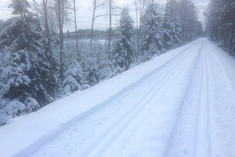 Det är finaförutsättningar för ReservRallarn på söndag med 30-50 centimeter snö i terrängen. FOTO: Rallarloppen.