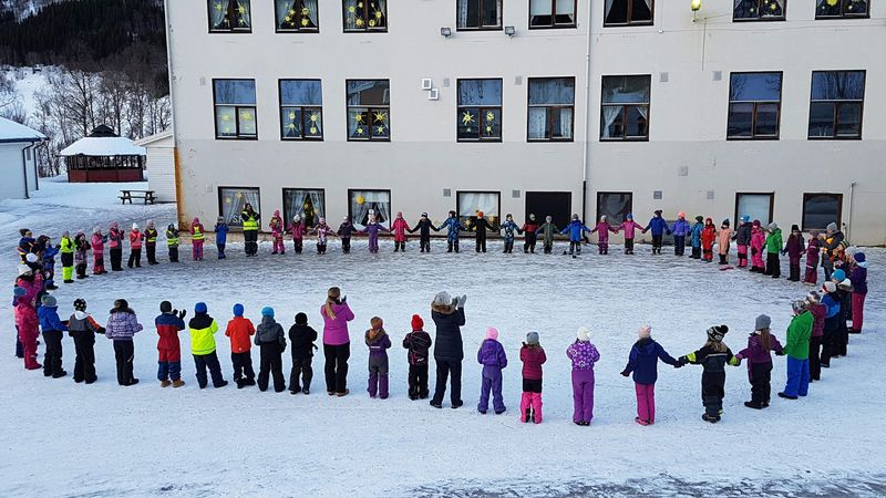 Skøelv skole 2018