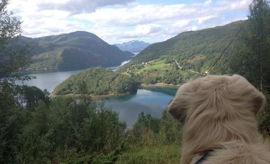 Utsyn over Leirfjorden