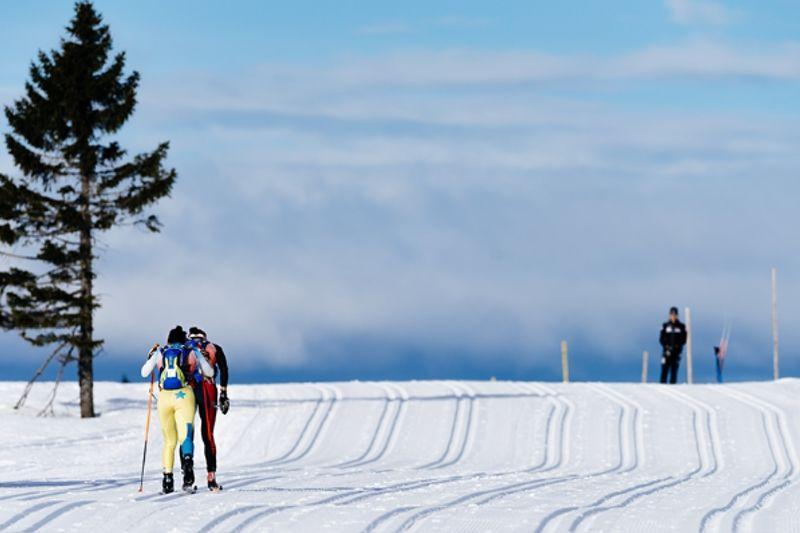 På lördag är det dags för 80:e upplagan av Birkenbeinerrennet mellan Rena och Lillehammer. FOTO: Magnus Östh.