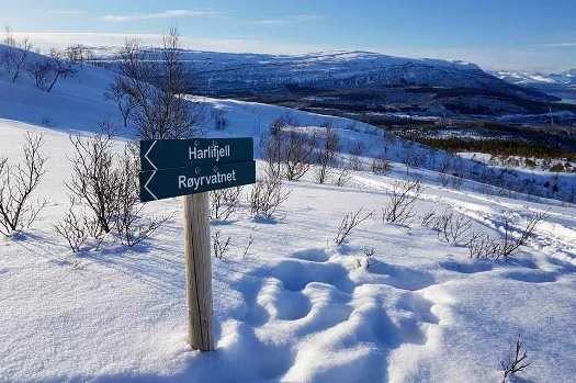 Turområde Harlifjell