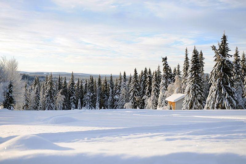 Det råder toppförhållanden inför finalen på Visma Ski Classics - sju mil långa Ylläs-Levi. FOTO: Magnus Östh.