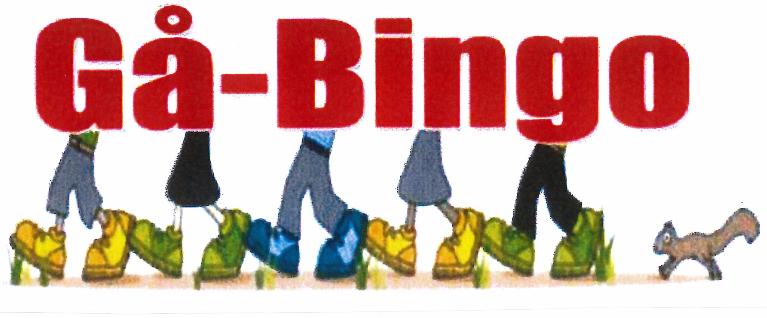 Gå-bingo bilde.PNG