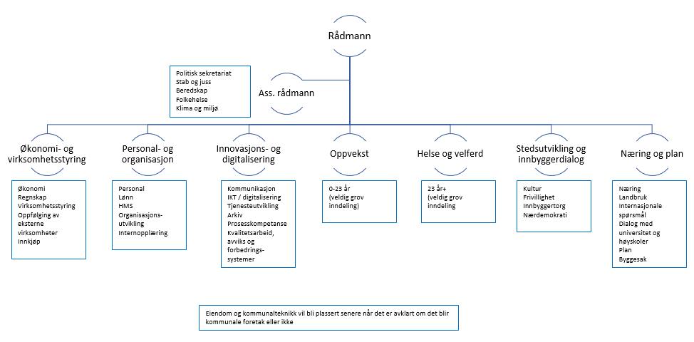 Organisering.toppledelse.PNG