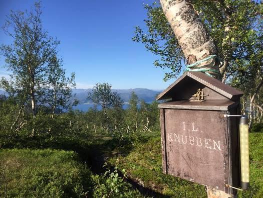 Ved Mollyhytta, Røsvikfjellet