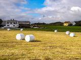 Landbruk i Eigersund kommune