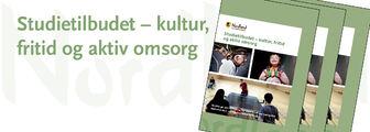 Ingressbilde til Studietilbudet – kultur,  fritid og aktiv omsorg