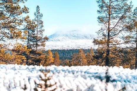 Det blir fina vyer för de som tar sina första stavtag för säsongen på Idre Fjäll i helgen. FOTO: Idre Fjäll.