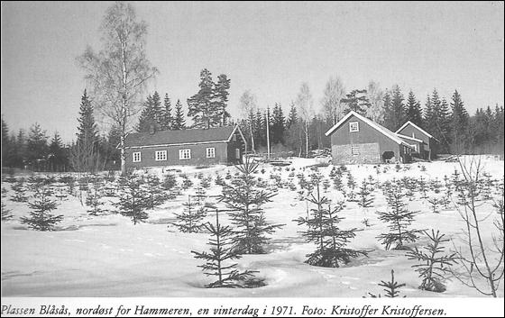 Blåsås. Fra Maridalen. Vakker og verneverdig 1989.