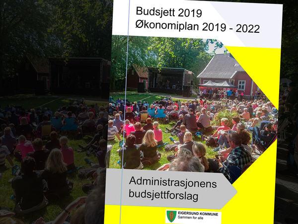 Budsjett for 2019