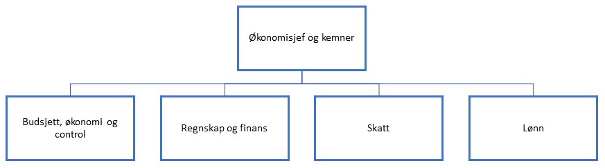 Organisasjonskart_Økonomiavdelingen