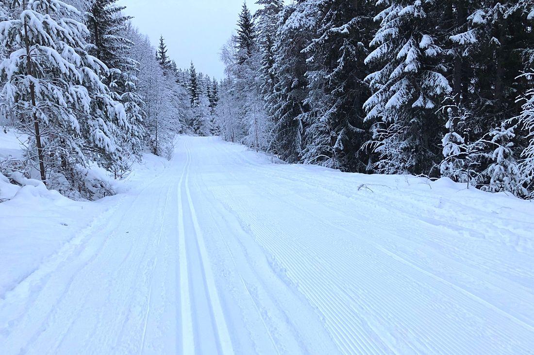 Det är bra med snö i Moratrakten och det bäddar för fina förhållanden till Moraloppet som avgörs lördag 19 januari. FOTO: Tomas Bredberg.