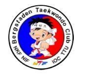 bergstaden logo