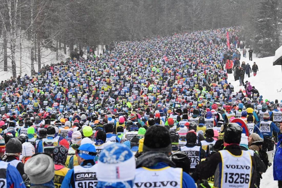 Preliminära siffror visar att 49 procent av de 60 000 anmälda deltagarna i Vasaloppets vintervecka ska åka hela sträckan mellan Sälen och Mora. 51 procent är anmälda till de kortare loppen. FOTO: Vasaloppet.
