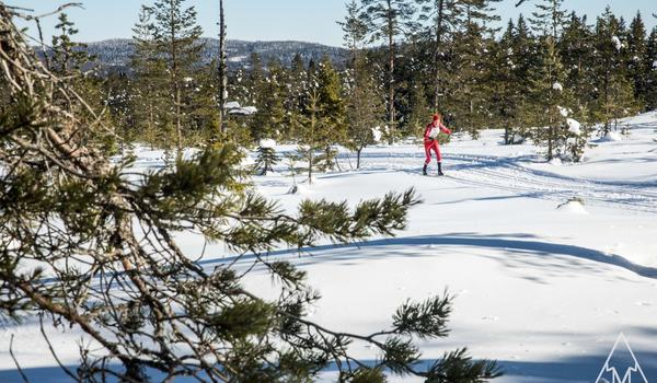 På lördag är det dags för andra upplagan av En riktig femmil i den fina Sörskogsterrägen. Årets upplaga är helt fri från fluorvallor. FOTO: AdaMedia Med Mera.