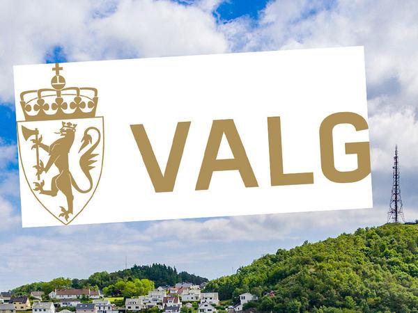 Logo for valg
