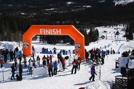 På lördag går Årefjällsloppet med start i Trillevallen och mål i Edsåsdalen. Till start kommer bland annat Ebba Andersson. FOTO: Årefjällsloppet.