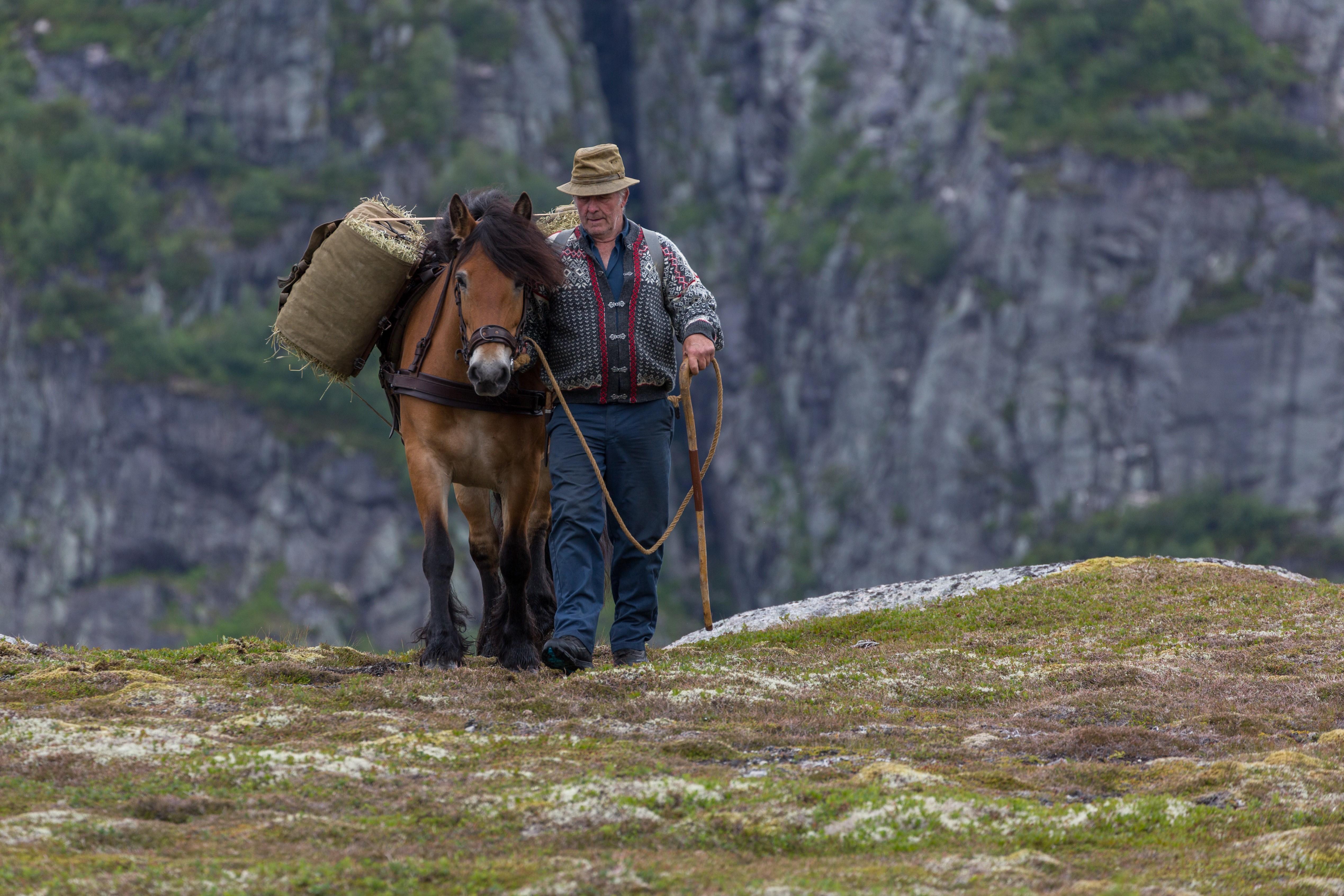 Bilde film Fjellfolk.jpg