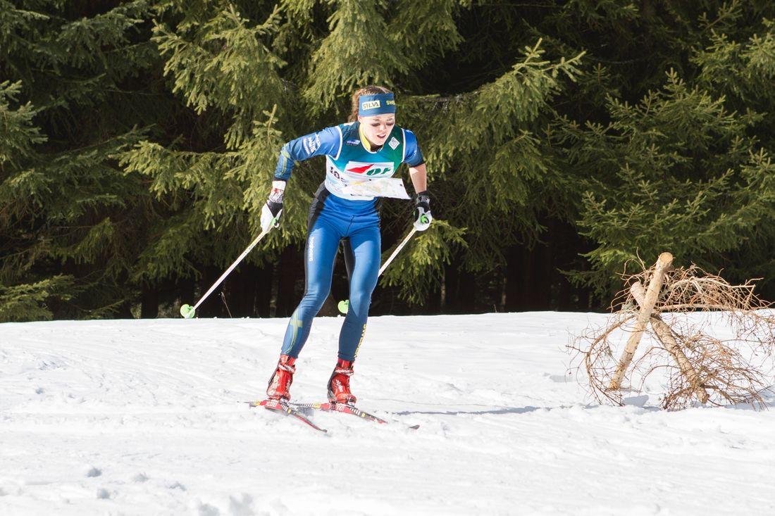 Tove Alexandersson väljer att stå utanför skidorienteringslandslaget inför kommande vinter. FOTO: Svenska orienteringsförbundet.