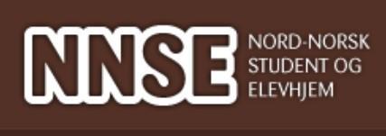 Logo NNSE