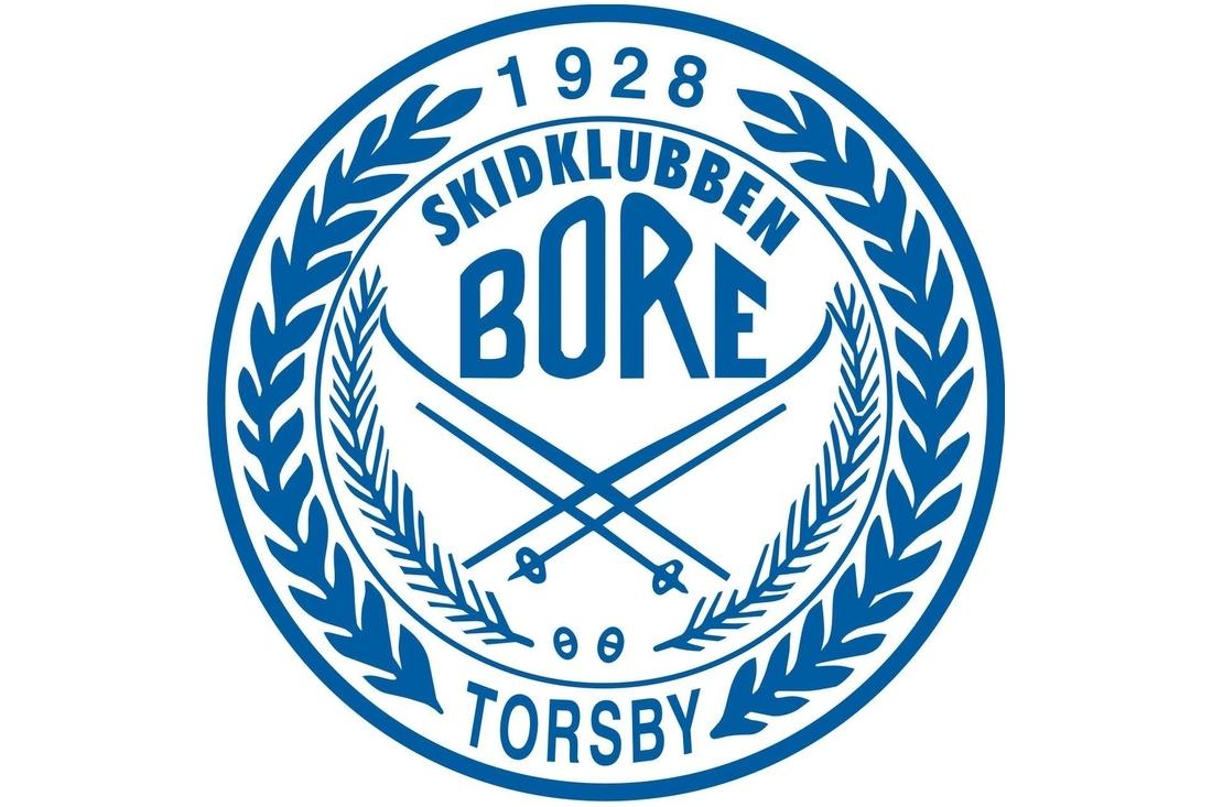 sk_bore_logo