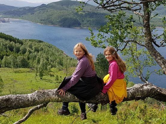 Utsikt fra Buviknakken