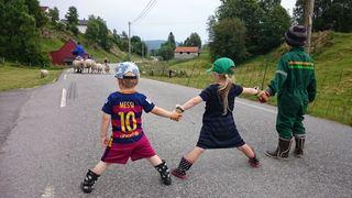 Rita Sæle Langeland_Messi på sauesanking_Nedre Sagstad Meland