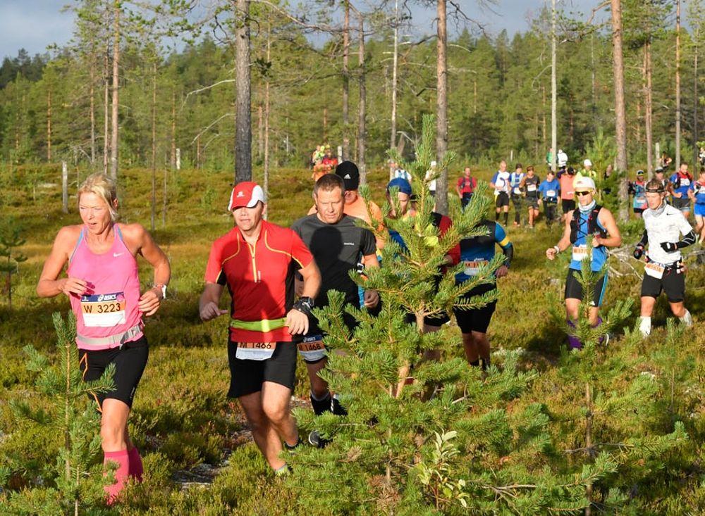6 000 löpare, både världselit och motionärer, från 22 nationer deltar på Ultravasan, Vasastafetten och Vasakvartetten på lördag. FOTO: Vasaloppet.
