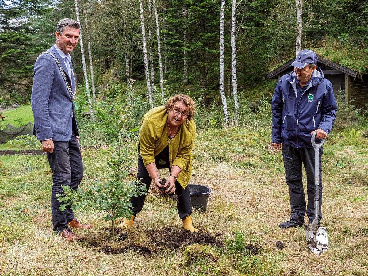 Planting av tre i statsrådsskogen
