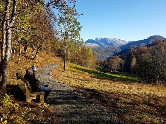 Utsikt fra Kjelvika