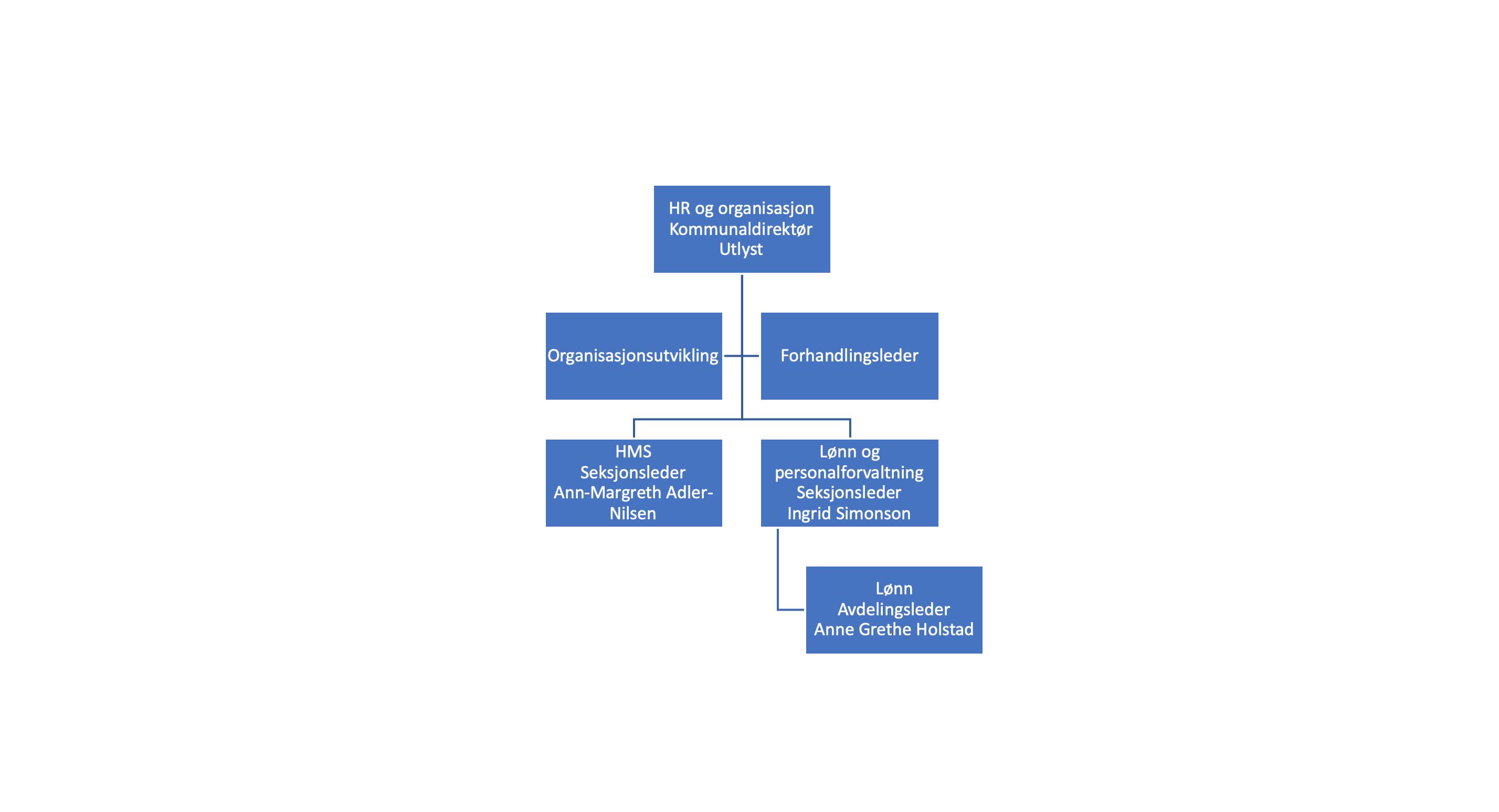 HR og organisasjon NY.png
