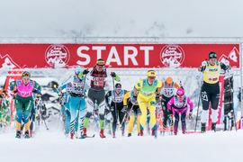 Antalet elittjejer i Visma Ski Classics ökar för varje år och inför vintern är det nu rekordmånga, 29,4 procent. FOTO: Visma Ski Classics.