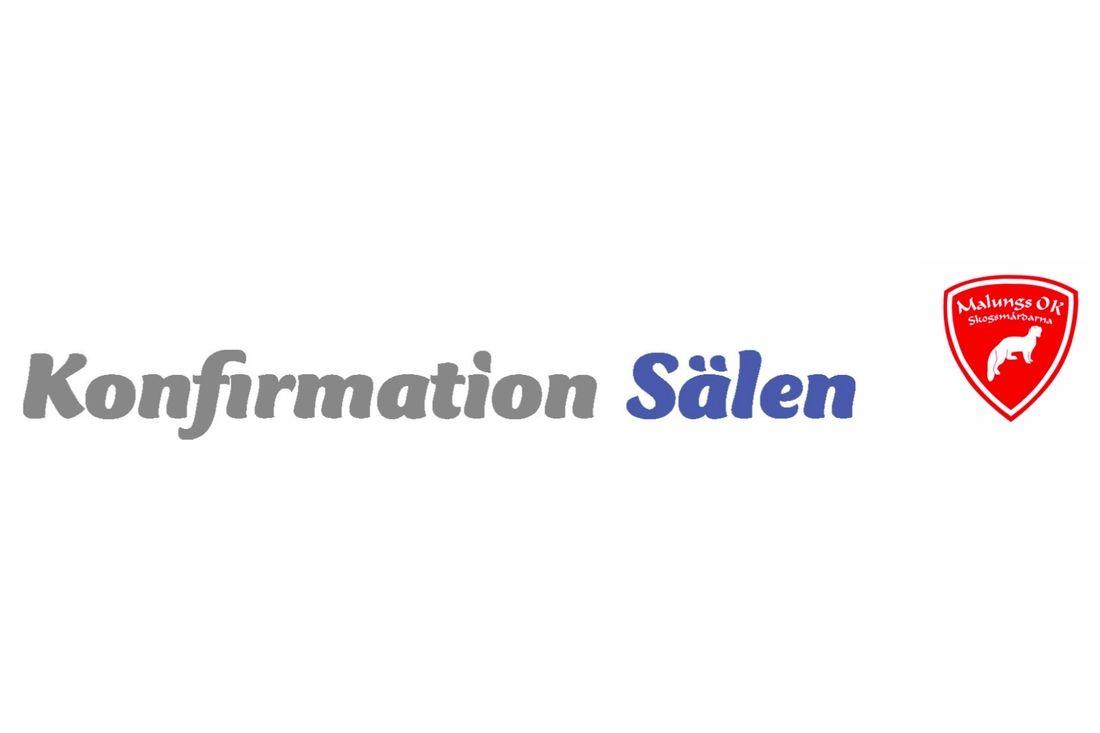 skidkonfa_salen