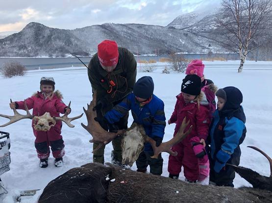 Barna ser på skutt elg