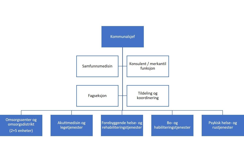 Organisasjonskart Sektor for helse og omsorg.jpg