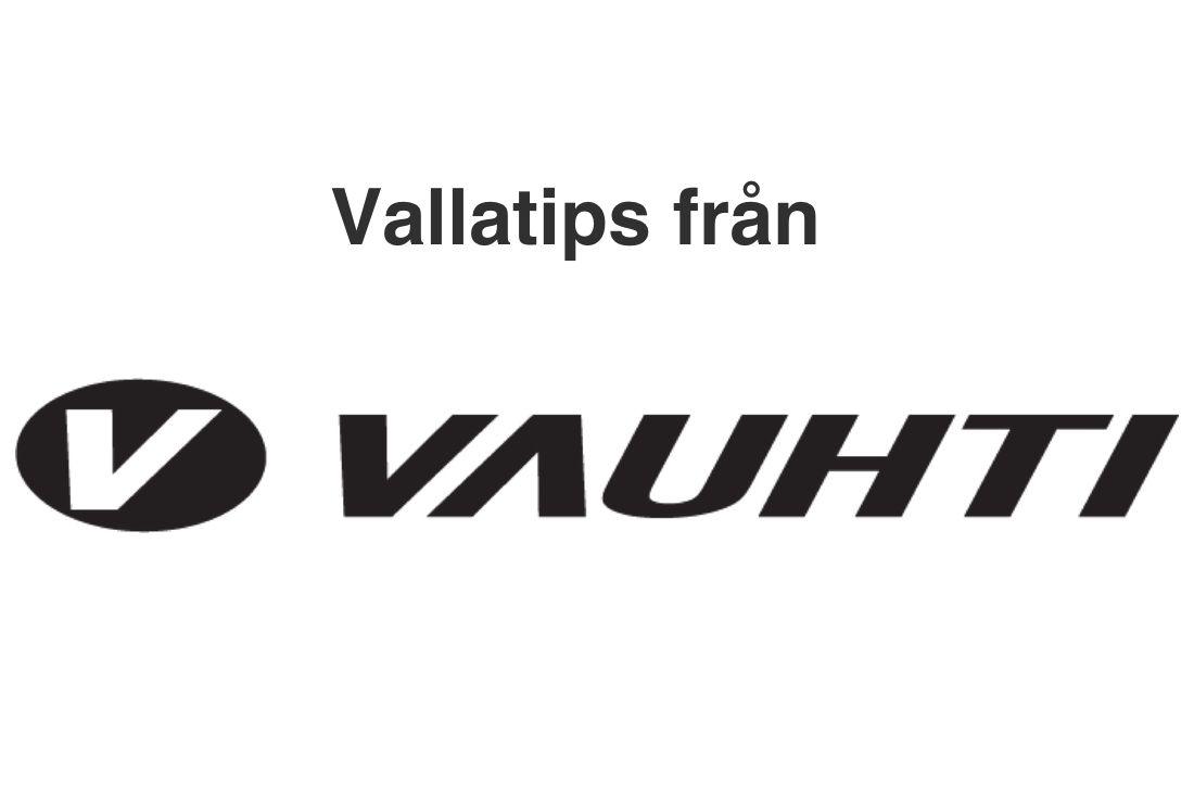 logo_vtips_vauhti