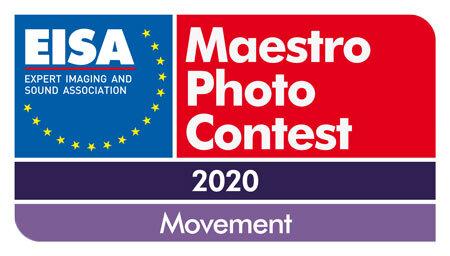 EISA-Maestro-2020-Logo-450px.jpg