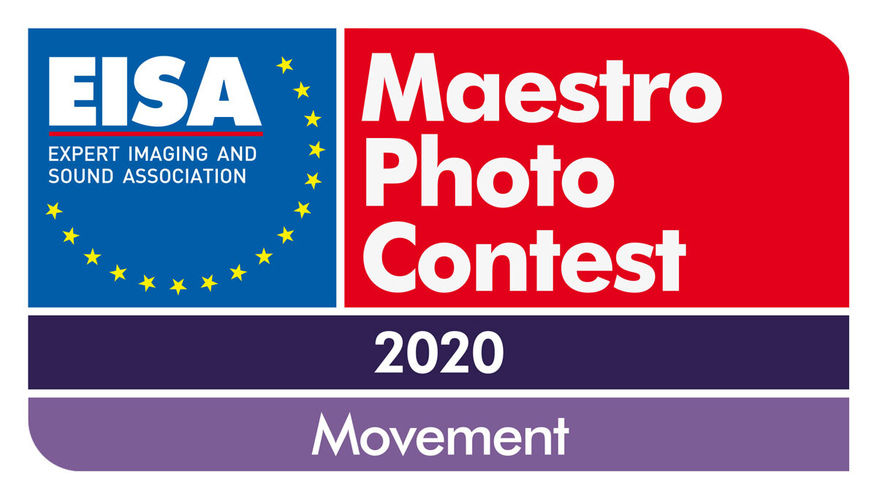 EISA-Maestro-2020-Logo-1200px