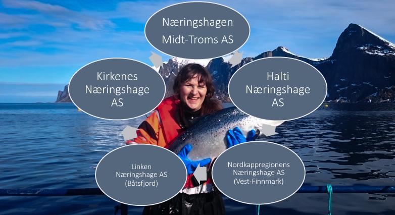 Naeringshagene-i-Troms-og-Finnmark.jpg
