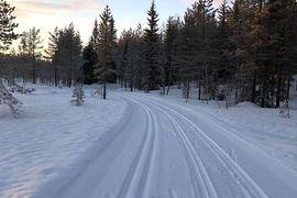 Det är gott om snö och fina förhållanden i Grönklittsterrängen inför Orsa Grönklitt Ski Marathon på lördag. FOTO: Orsa Grönklitt Ski Marathon.
